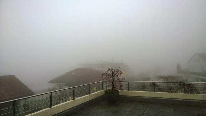 Swiss fog