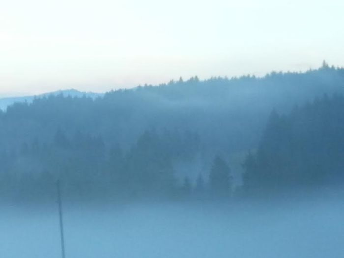 thick fog in eastern Switzerland