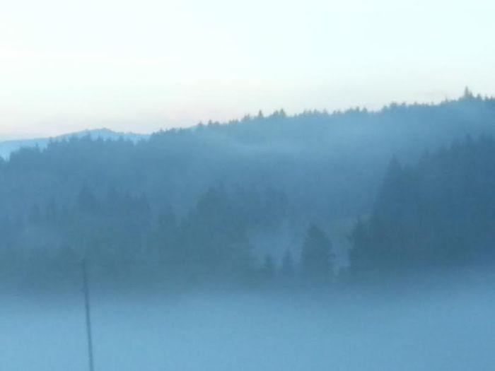 thick fog in eastern Switzerland