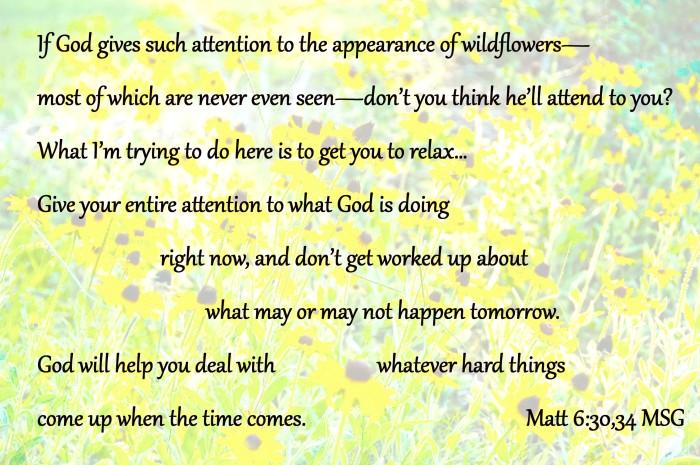 Matt 6:30-34