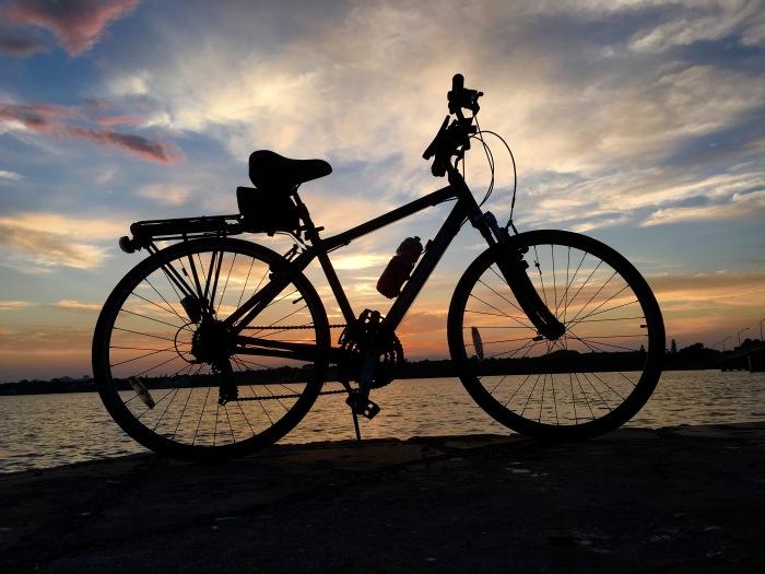 back on the bike again
